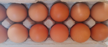 Eggs, local | pastured | certified organic feed