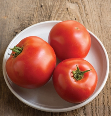 Plants, Veggies, Tomato, 'Big Beef'
