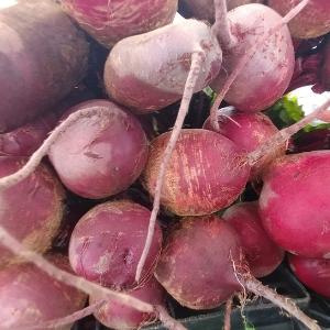 Beets by the Bunch