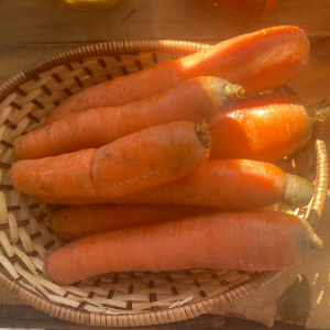 Carrots, Wholesale, by the pound