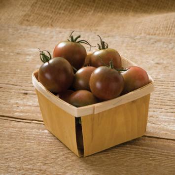 Plants, Veggies, Tomato, 'Black Cherry'