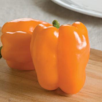 Plants, Veggies, Sweet Pepper, Orange Bell