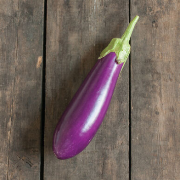 Plants, Veggies, 'Dancer' Eggplant