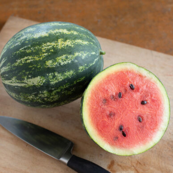 Plants, Veggies, 'Mini Love' Watermelon, 4-pack