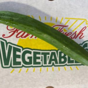 Cucumbers, European, Wholesale