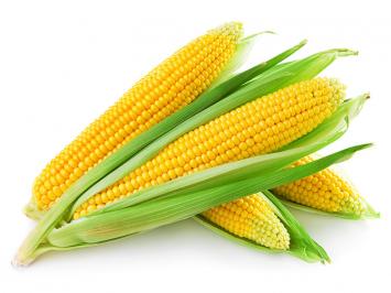 Keller Farms Corn By The Ear