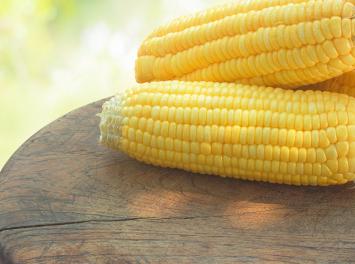 Keller Farms Corn by the Dozen