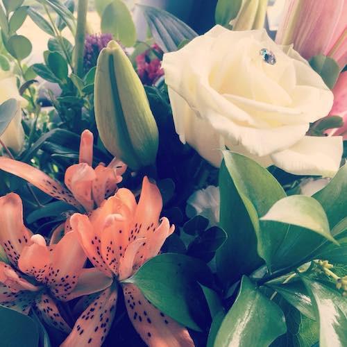 Specialty Flowers