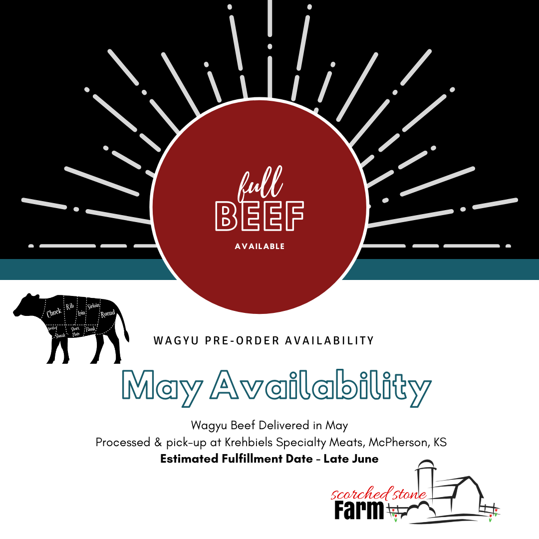 Wagyu Beef Availability