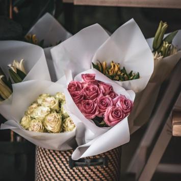 6 Long-Stemmed Roses