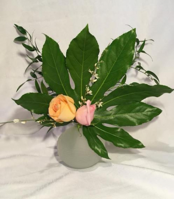 2 Rose Arrangement in Vase
