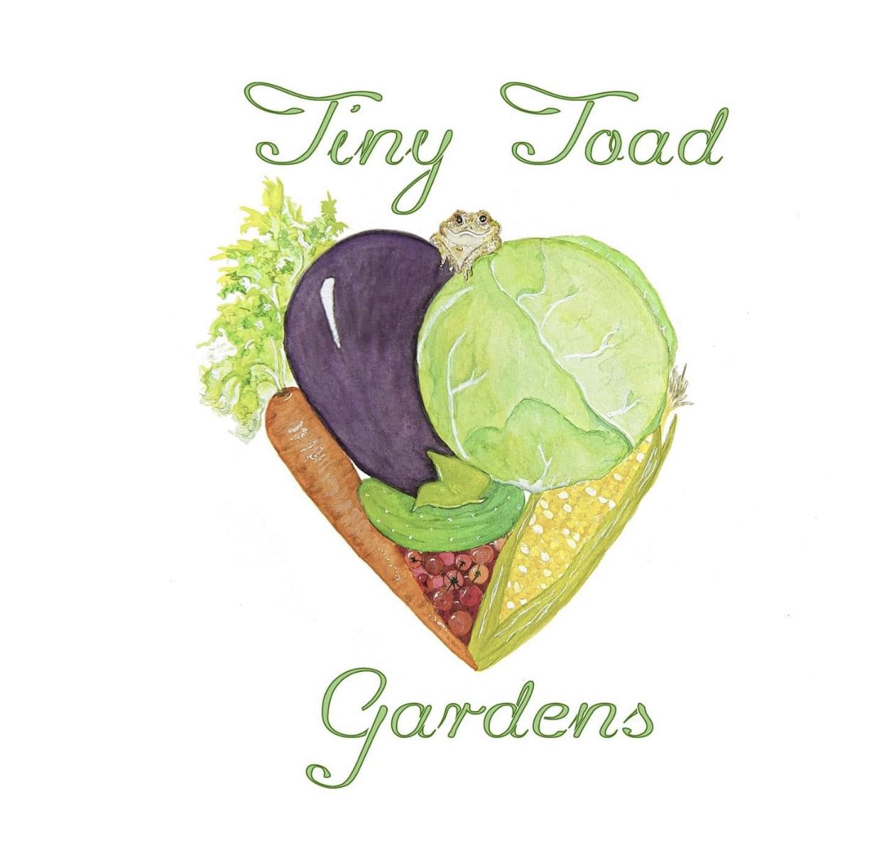 Tiny Toad Gardens