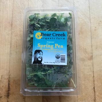 Micro greens Pea Shoot