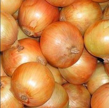 Organic Spanish Onions