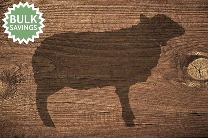 Lamb Bundles