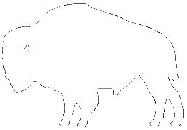 Bison-Harvest-Logo.png