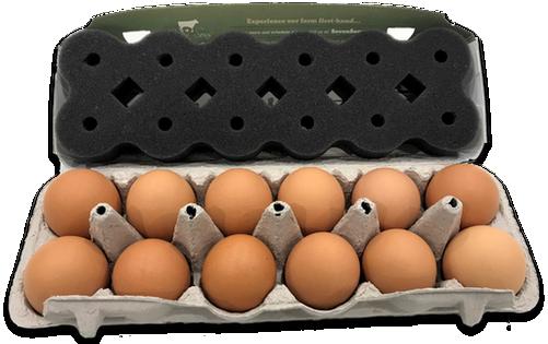 Snuggled-Eggs-2.png