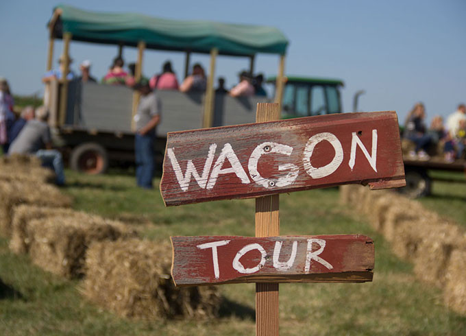 Wagon Tours