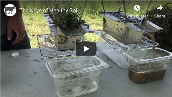 Nutrient-Rich Soil vs Nutrient-Depleted Soil