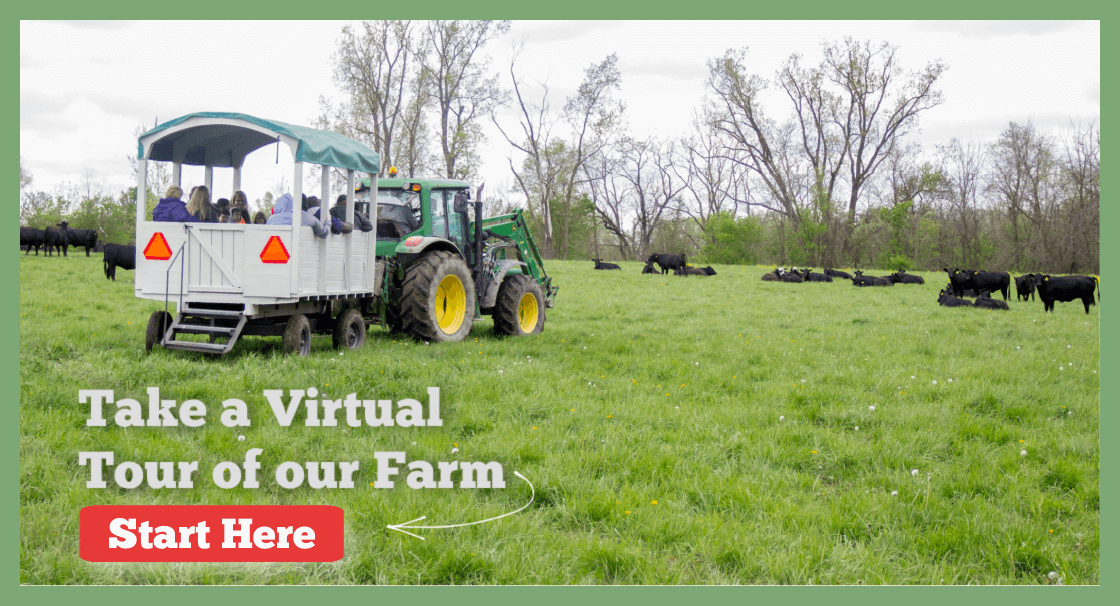 Seven Sons Virtual Farm Tour.png
