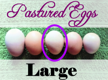 Eggs (Large, Bundle Price)