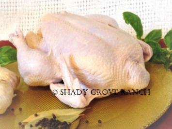 Whole Chicken (3-4 lb)