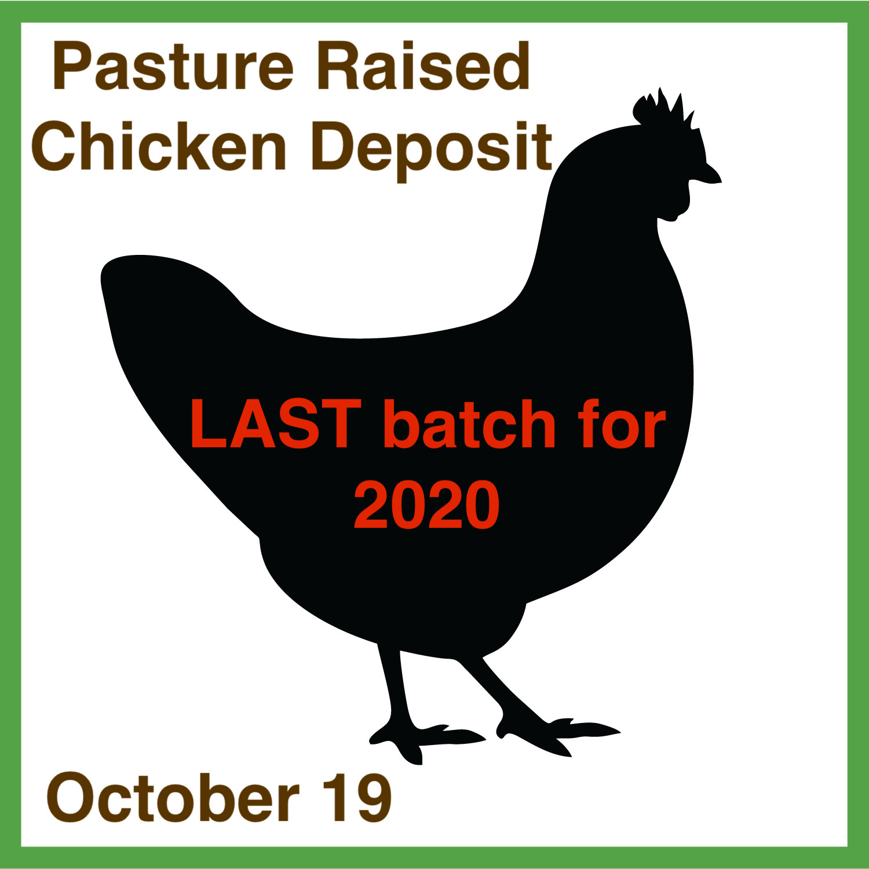 Chicken-Pasture Raised (deposit October 19)