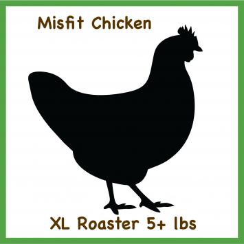Misfit Chicken-XL 5+ Lbs Whole Roaster Pasture Raised