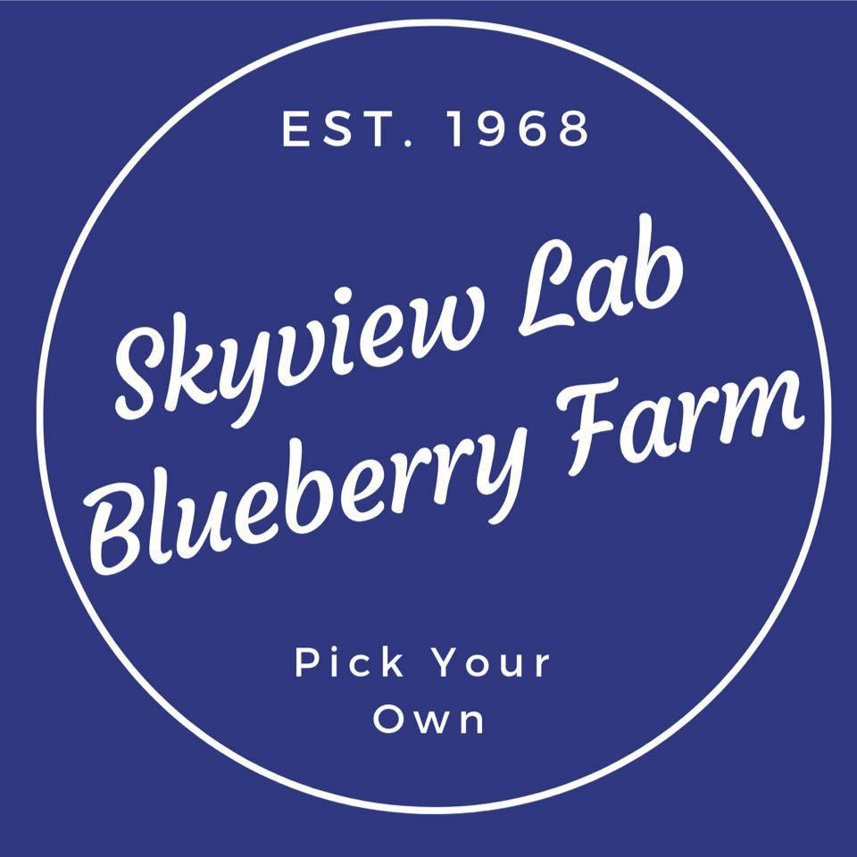 Skyview Lab Blueberry Farm Logo