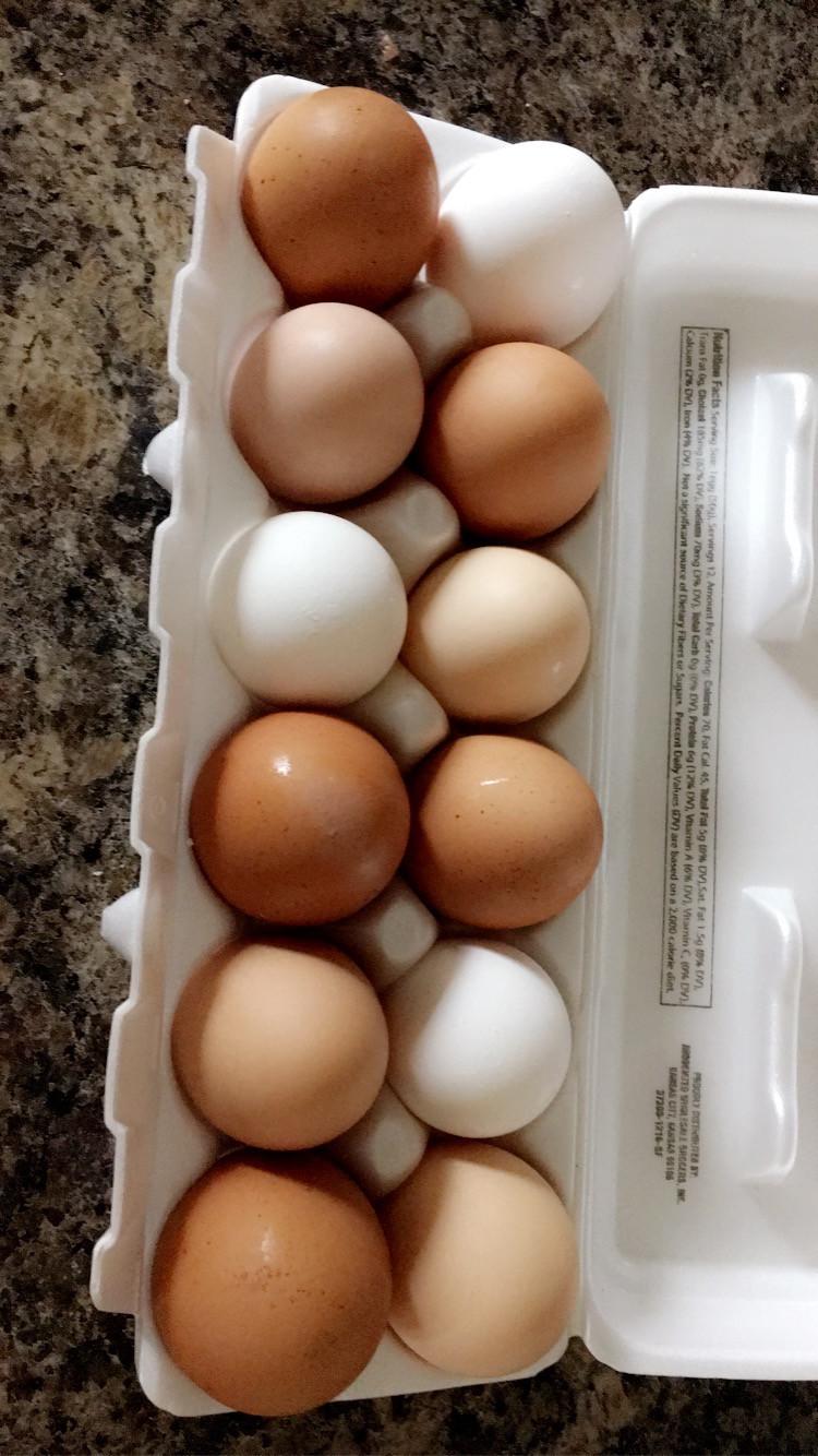 1 Dozen Large Eggs