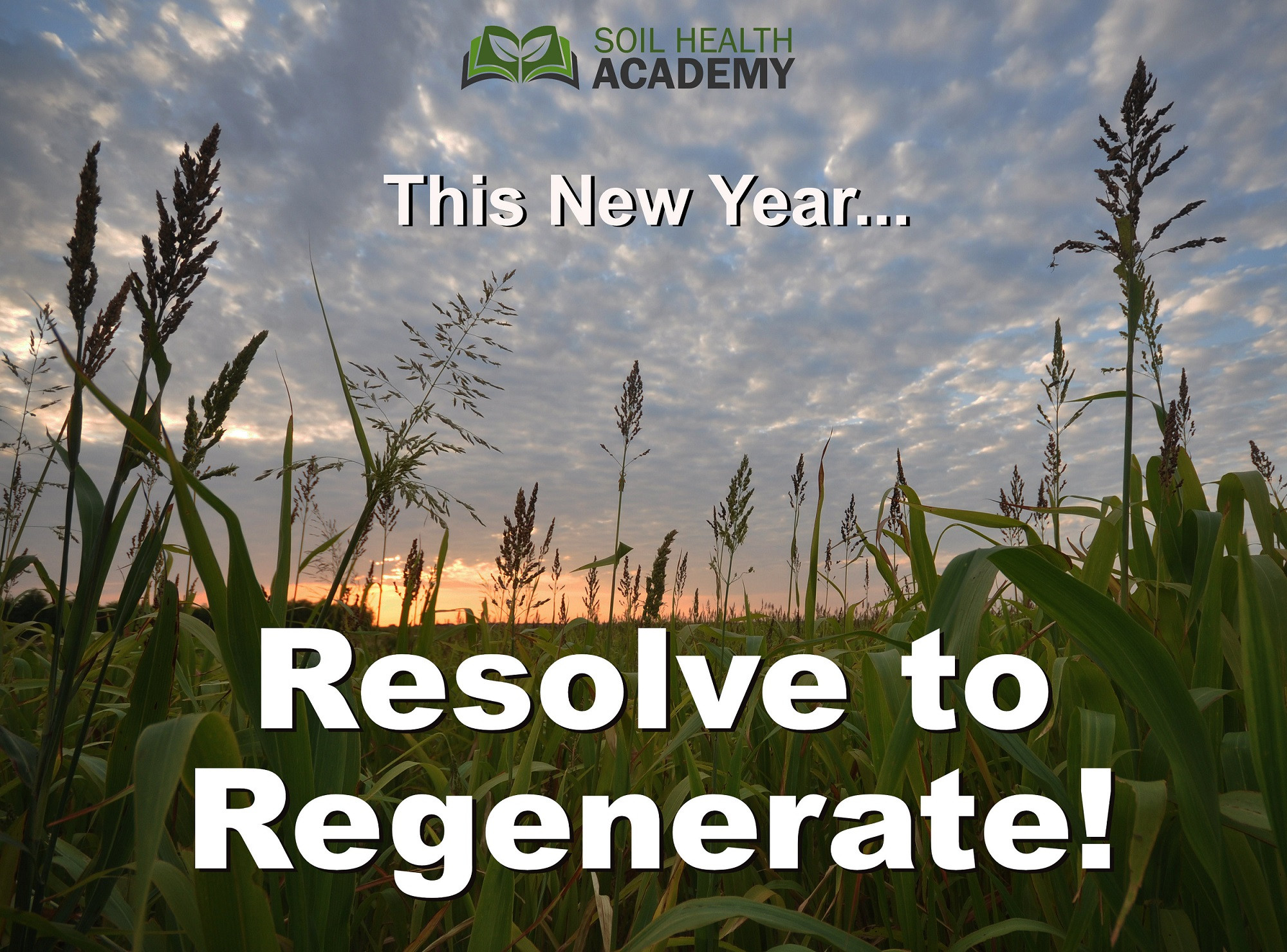 Top 10 Reasons to Regenerate in 2020