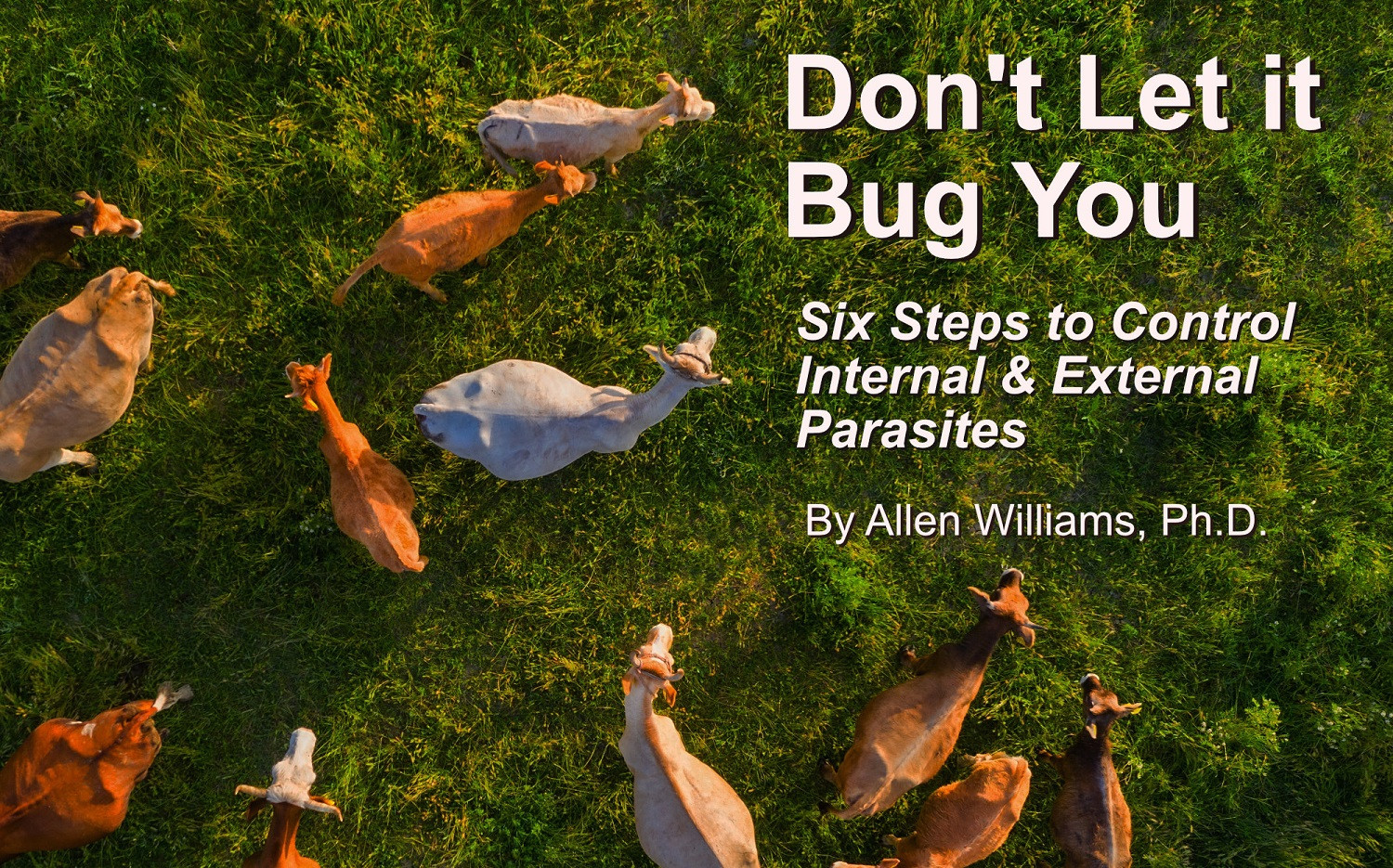 Don't Let it Bug You  Six Steps to Control Internal & External Parasites