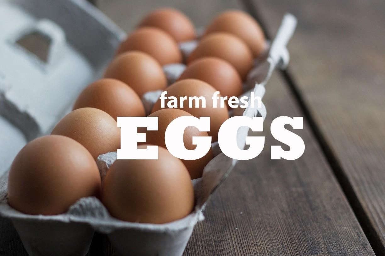eggs-words.jpg