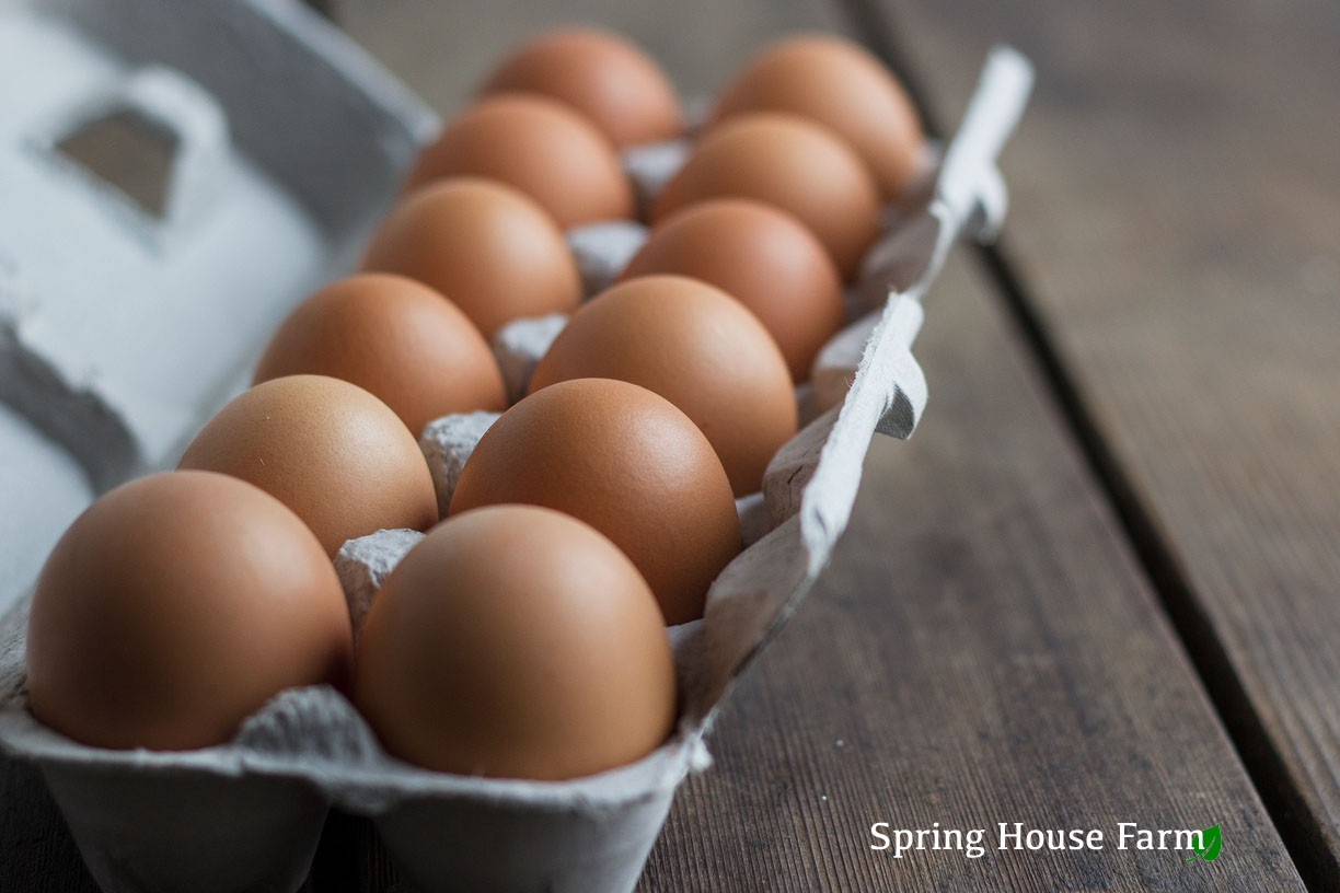 WINTER CSA Eggs Add-on (1 Dozen Eggs in each bi-weekly delivery)