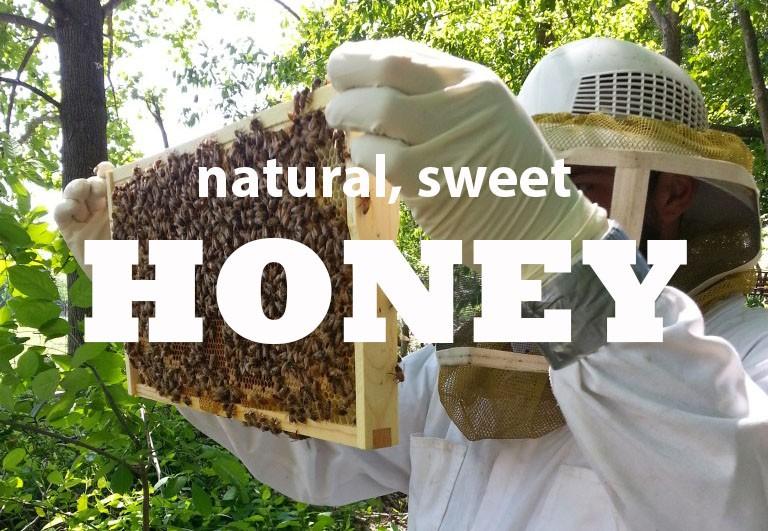 honey-words.jpg