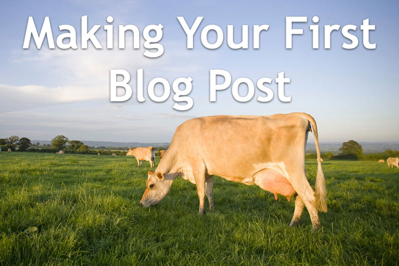 Making Your First Blog Post