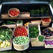 Produce/Ferments