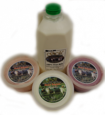 G&M Fresh Goats Milk