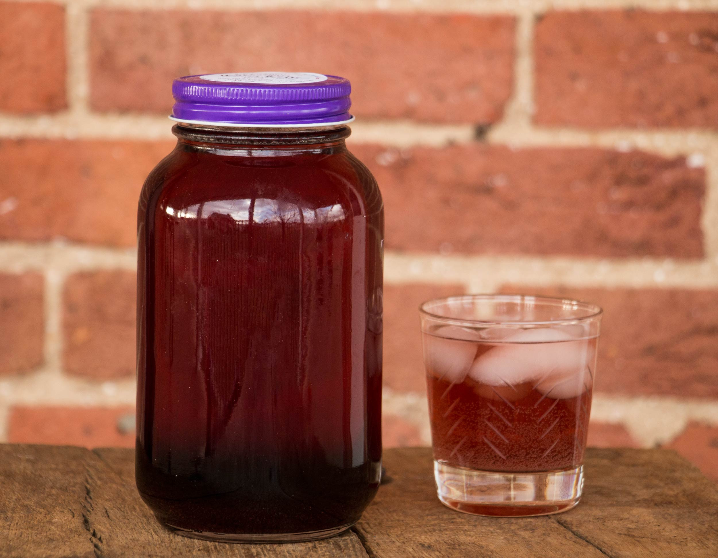 Sambucus Elderberry Water Kefir