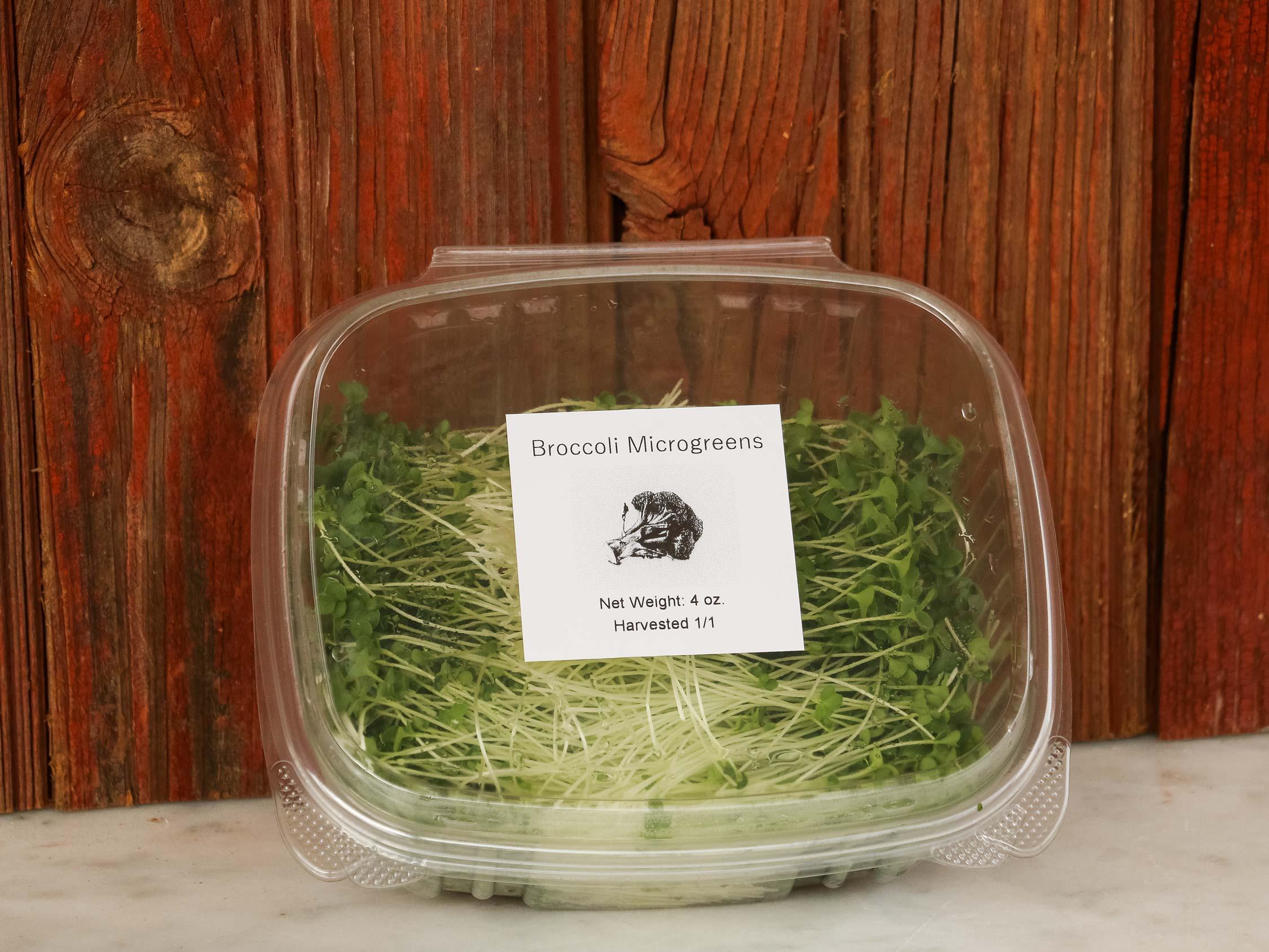 Microgreens (Broccoli)