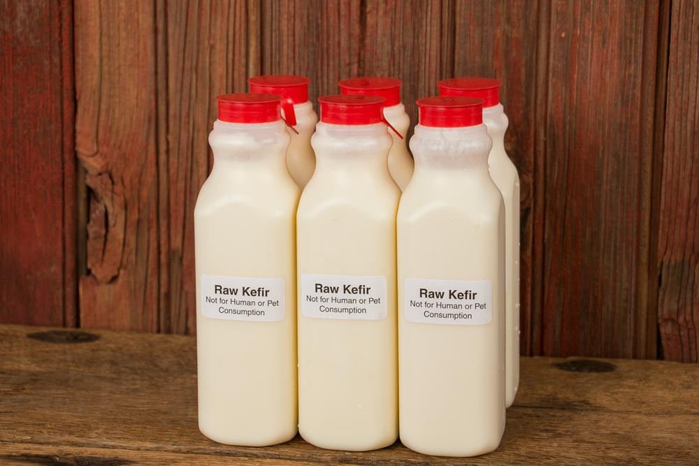 6 Pack Raw Milk Kefir