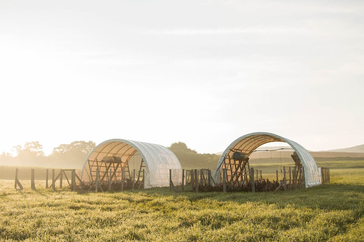 Turkey-mobile-pasture-shelters.jpg