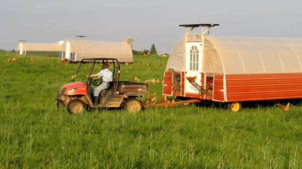 Moving-the-chicken-shelters.jpg
