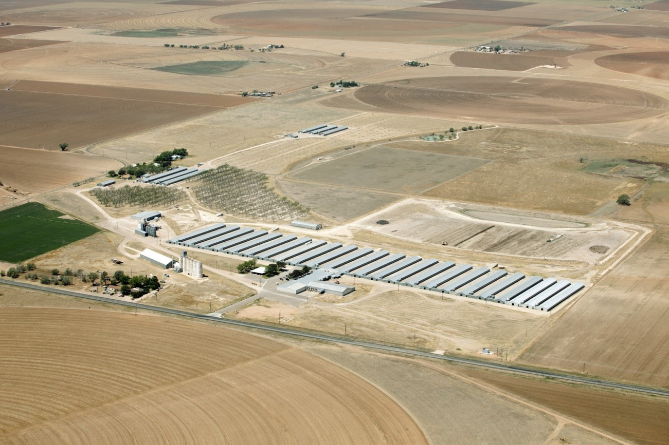Chino-Valley-Rancher's-CAFO-operation.jpg