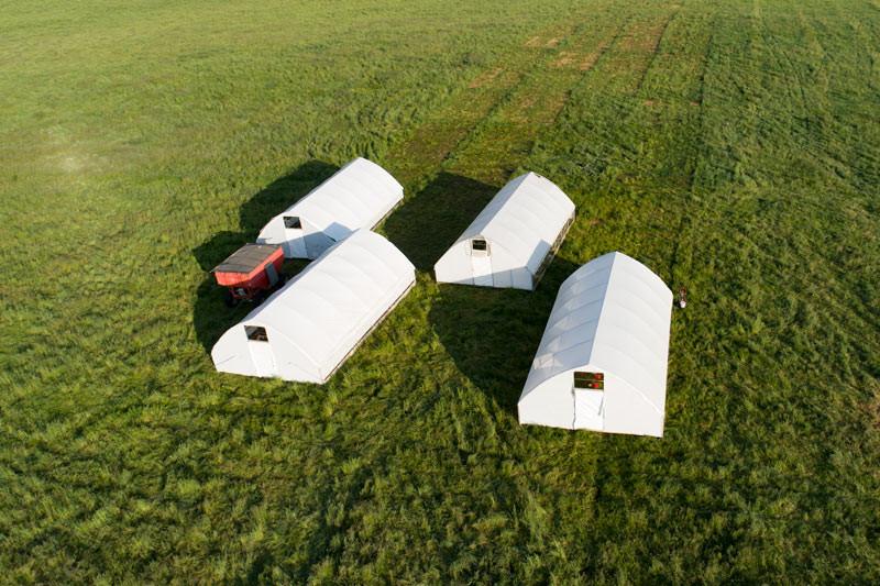 Broiler-Range-Shelters-chickens-2.jpg