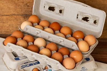 Soy-Free Eggs