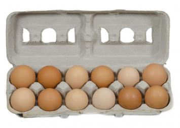 Large/X Large Soy-free Eggs