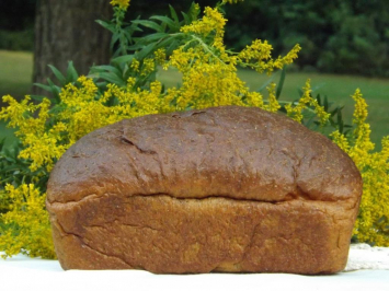 Sprouted Organic Bread