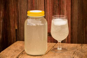 Lemon Aid Water Kefir