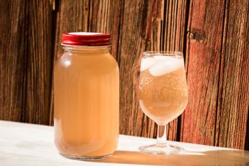 Pomegranate Lime Spritzer Water Kefir